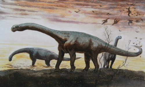 Apatosaurus